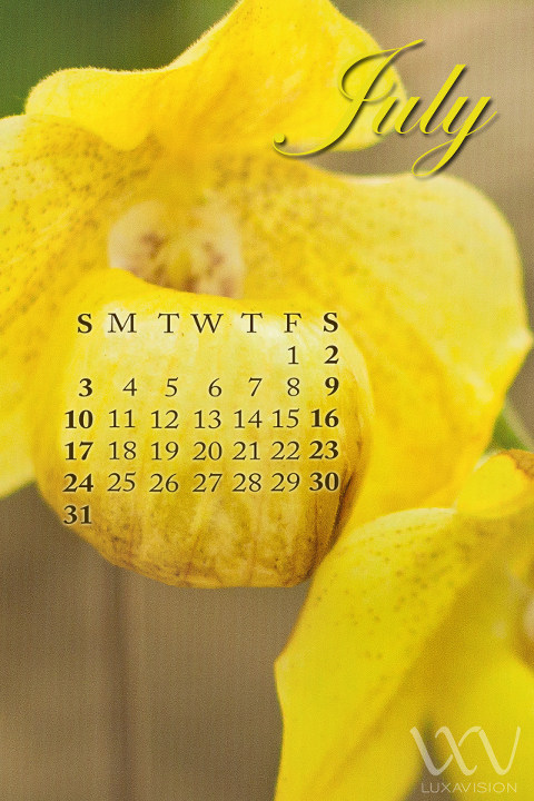 Desktop Calendar for July 2011 - Yellow Orchids - iPhone